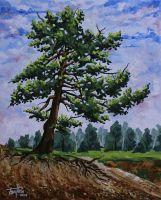 «Дерево на склоне»
