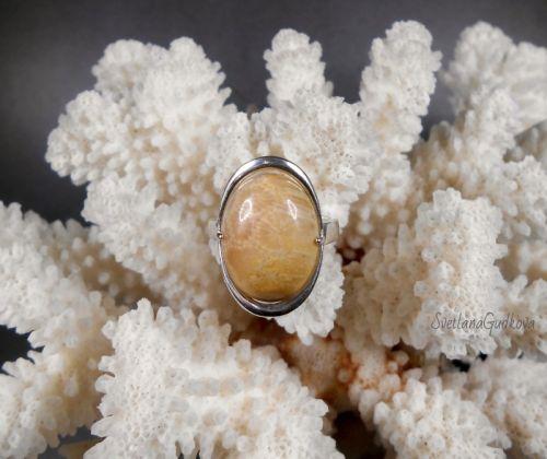 Серебряное колечко с окаменелым кораллом