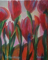 Сияние тюльпанов