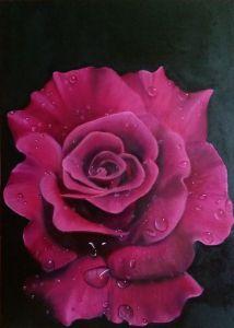 Мальовані картини Троянда бордо