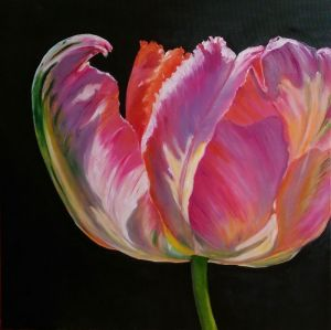 Картини маслом Тюльпан