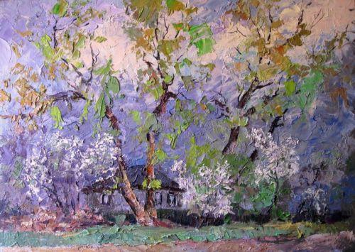"""Цветущие вишни возле двора"""