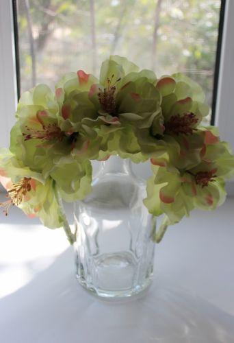 Цвіт гібіскусу