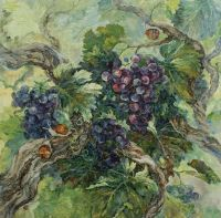 Путешествие виноградной лозой