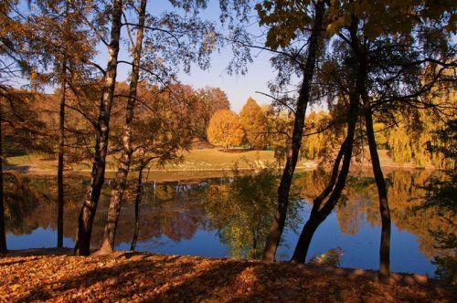 Золотая осень (Львов, Алтайские озера)
