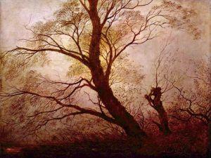 Деревья в лунном свете