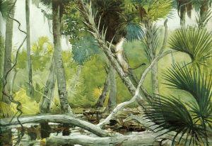 Хомер Уинслоу В джунглях Флориды