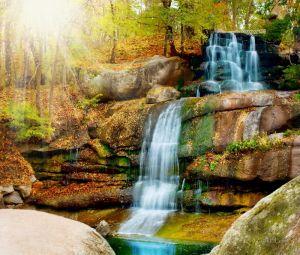 Фотокартины для интерьера Водопад в лесу