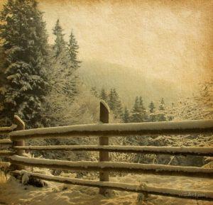 Фотокартины для интерьера Зима в Карпатах