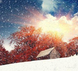 Фотокартини Зима