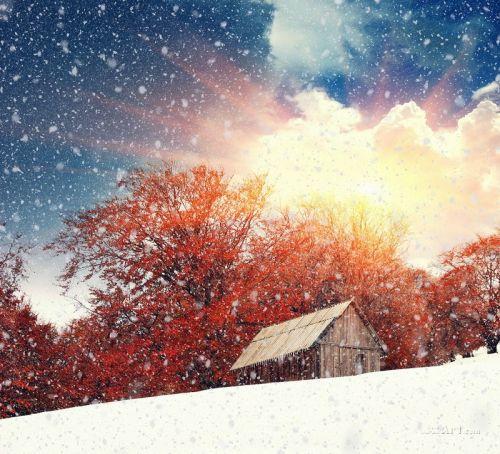 Зима - изображение 1