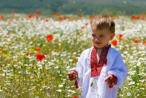 Фотокартини Маленький козак