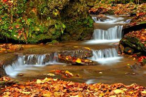 Фотокартини Осінній водоспад