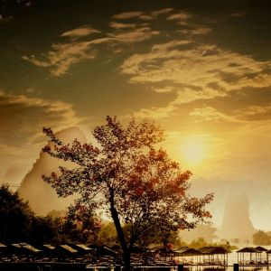 Фотокартины для интерьера Закат солнца