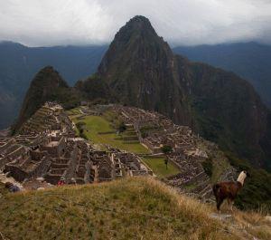 Фотокартины для интерьера Мачу-Пикчу