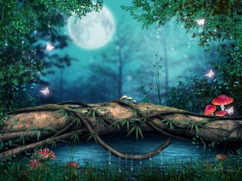 В лунную ночь