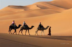 Фотокартини В пустелі