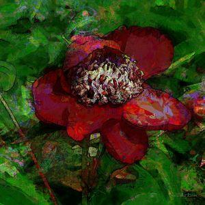 Фотокартины для интерьера Цветок