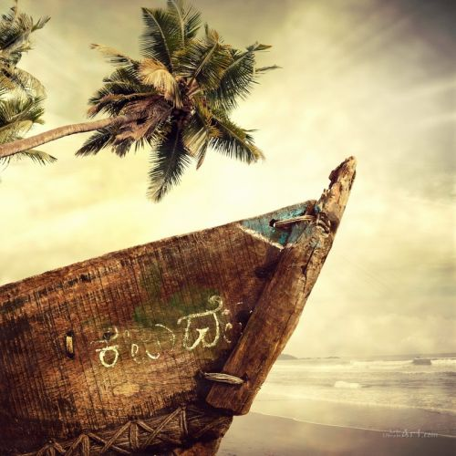 Лодка и пальма