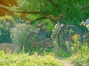 Печатные картины на холсте Старый велосипед