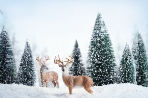 Фотокартины для интерьера Олени зимой