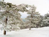 В горах зимою