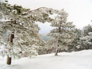 Фотокартини В горах зимою