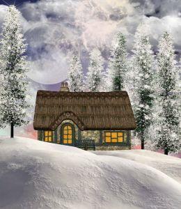 Печатные картины на холсте Зима