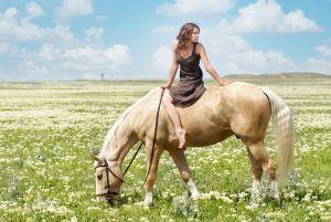 Маленькая женщина и большой конь