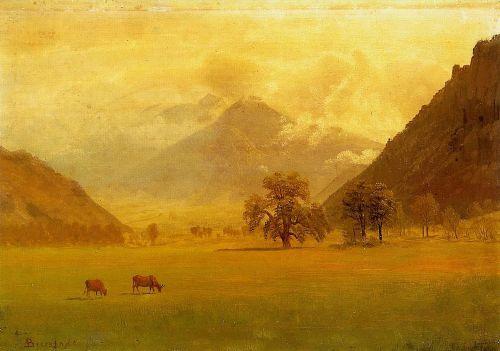 Долина Рони
