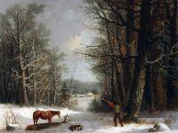 Лесной житель зимой