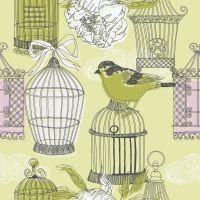 Птаха і клітки