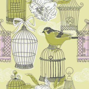 Птица и клетки