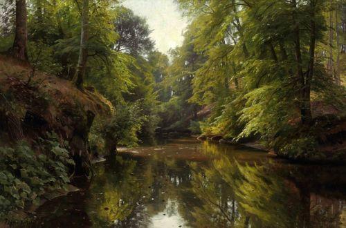 Лесной пейзаж реки