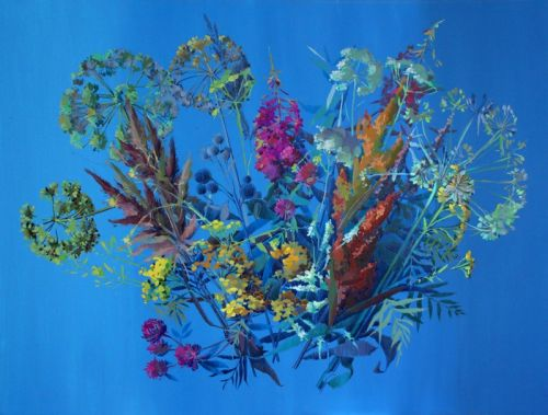 Полевые цветы