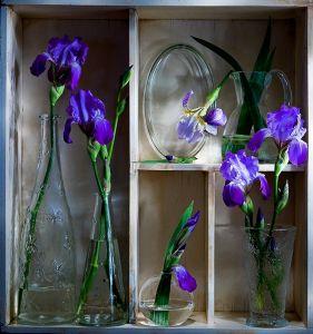 Полка с голубыми цветами