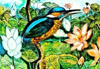 Пташка