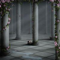 Комната с розами