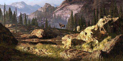 Лось в Скалистых горах