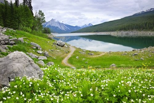 Горное озеро в национальном парке Джаспер, Канада