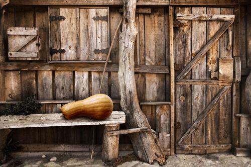 Деревянный двор