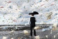 Финансовый дождь