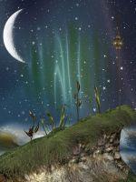 Сказочная ночь