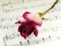 Музыкальная роза