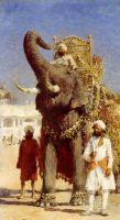 Слон Раджі