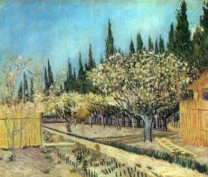 Ван Гог Винсент Сад в цвету с кипарисами на грани