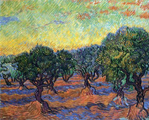 Оливковая роща, оранжевое небо