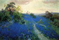 Голубые поля
