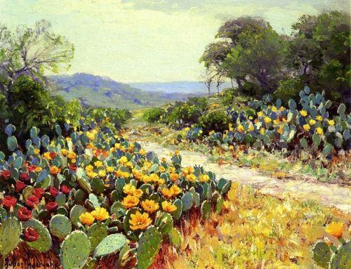 Кольорові кактуси - зображення 1
