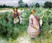 Сбор полевых цветов